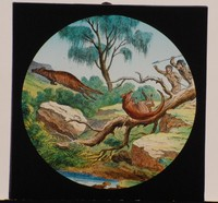 Image of VICTORIAN GLASS SLIDE , 1801